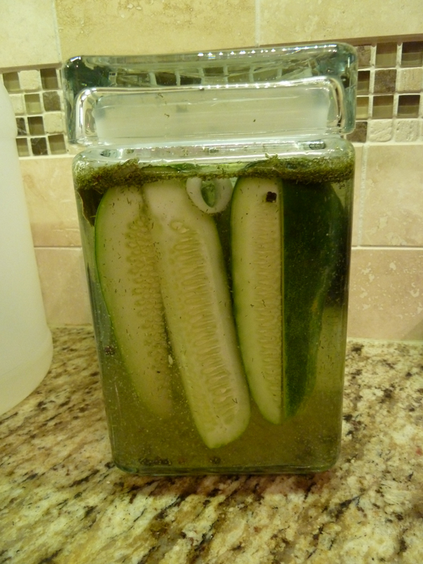 easy-dill-fridge-pickles2